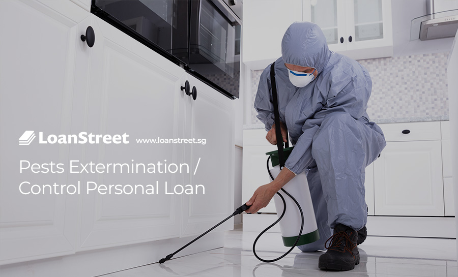 Pests-Extermination-Control-Personal-Loan-Loan-Street-Singapore
